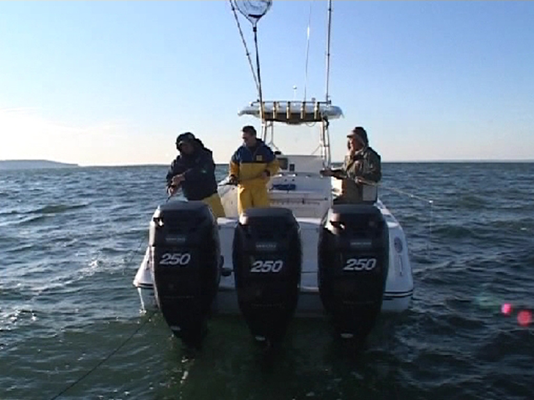 Blackfish Fishing (Tautog fishing)