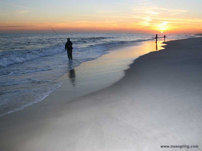 Fishing wallpaper saltwater fishing for Northeast saltwater fishing reports