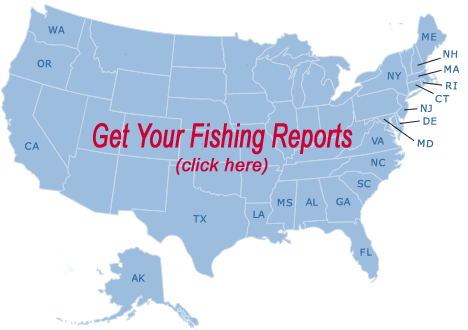 Fishing reports free fishing reports for New york state saltwater fishing license