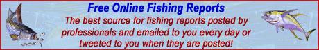 Free Fishing Reports