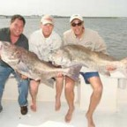 Cape May, NJ - Black Drum - 2008