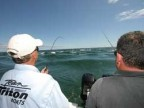 Monomoy Rips, MA - Stripers - 2008