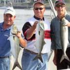 Norwalk, CT - Topwater Bluefish - 2005