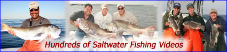 Saltwater Fishing Videos