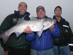 Sandy Hook, NJ - Striped Bass - 2006
