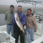 Barnegat Bay Weakfish - 2004