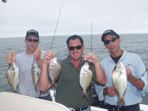 Porgy Fishing