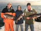 Newport, RI - Blackfish - 2006