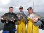 Niantic, CT - Sea Bass & Porgies - 2007