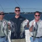 Nantucket Sound Sea Bass - 2004